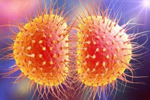 Resistant Gonorrhea