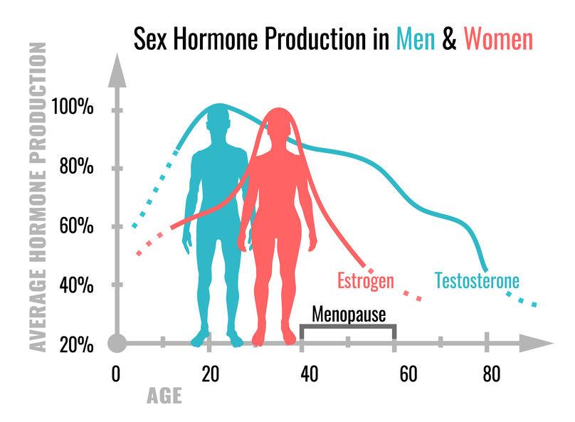 estrogen levels in women sex drive in Burlington
