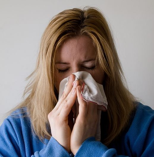 Why Low Humidity is Flu Virus' Best Friend And A Humidifier is Yours