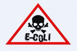 E Coli Dangers