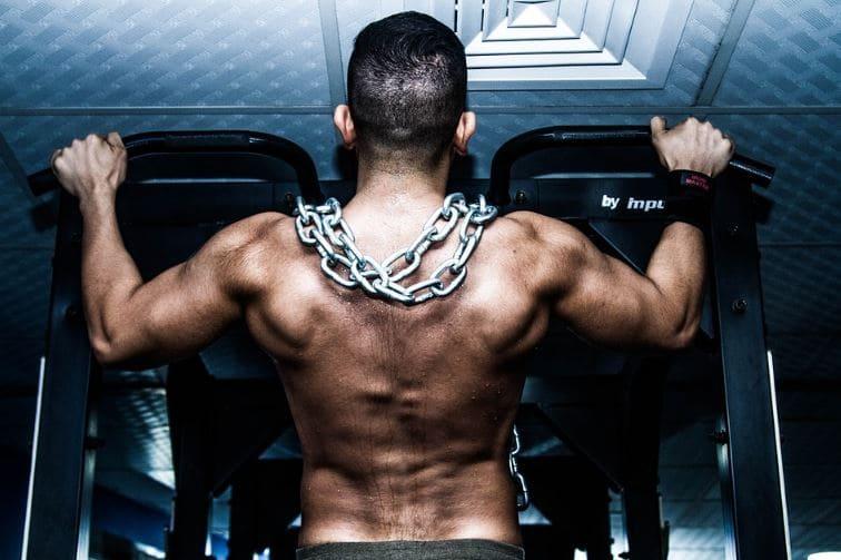 Muscles Strength Endurance