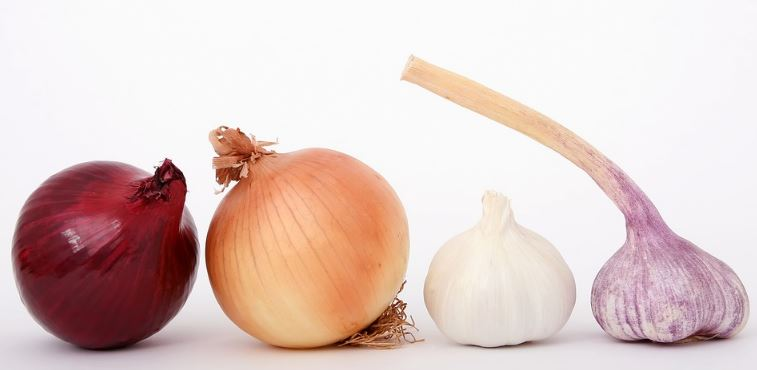 Onions and Garlic to Prevent Breast Cancer